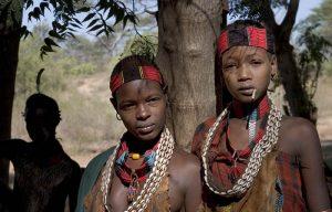 south-hamar-tribews