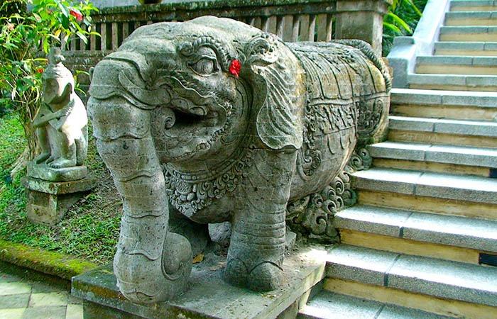 Elephant WS